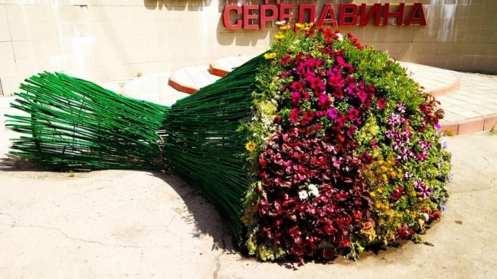 Около больницы имени Середавина «возложили» гигантский букет цветов