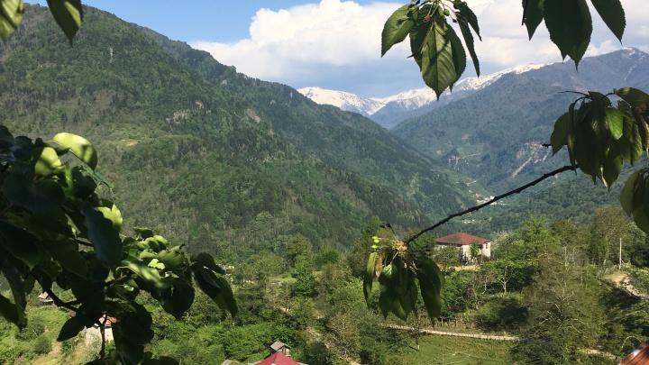 Отпуск под угрозой срыва: что означает для туристов из Уфы запрет полетов в Грузию