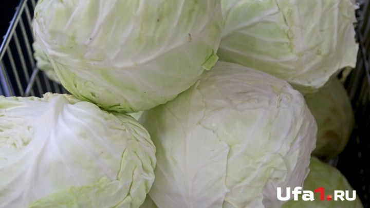 В Башкирии забраковали почти 800 кг овощей