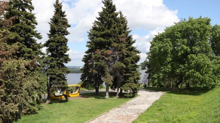 Деньги за билеты вернут. Экологический фестиваль в Нижнем Новгороде стал бесплатным