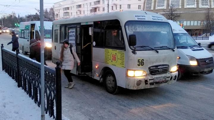 «Дармоеды они»: борец с маршрутками рассказал о неласковом приёме начальника управления транспорта
