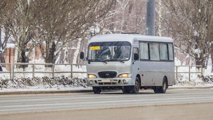 В Самаре планируют вернуть коммерческие маршрутки до Красной Глинки