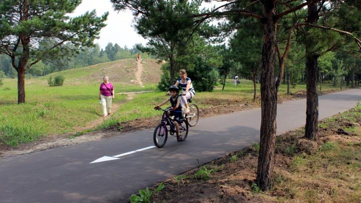 ПДД для велосипедистов: соблюдать или нет?