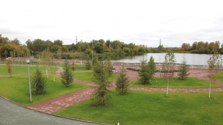 Возле озера в Ленинском районе разбили набережную и высадили деревья