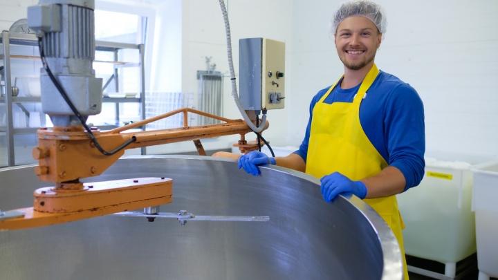 Подсел на факторинг и госзакупки: три бизнес-лайфхака от опытного сыровара