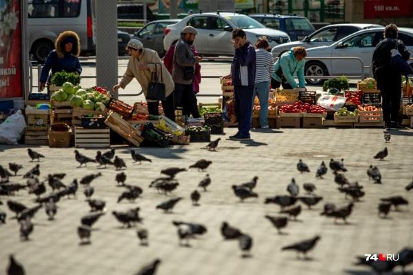 С приходом ярмарок челябинские чиновники рассчитывают победить стихийную торговлю на улице