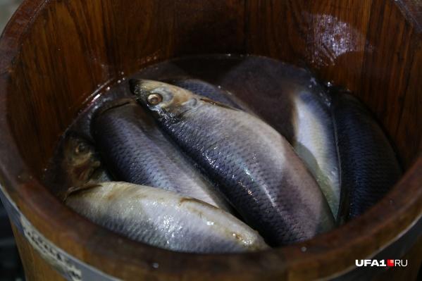 Рыба за зиму сначала подскочила в цене на четыре рубля, а потом подешевела. Но всего на три