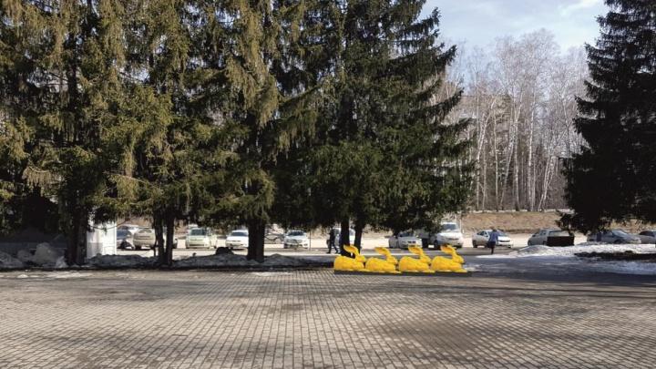 Банкиры предложили поставить около ТЦ Академгородка толпу жёлтых зайцев