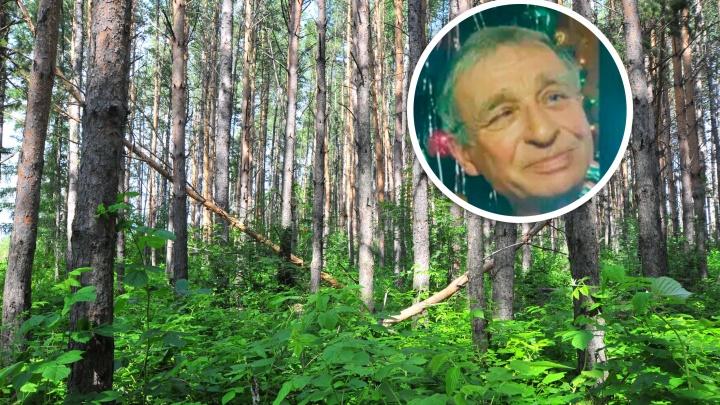 «Перенёс инсульт, плохо слышит»: в лесу под Первоуральском четвёртые сутки ищут дедушку