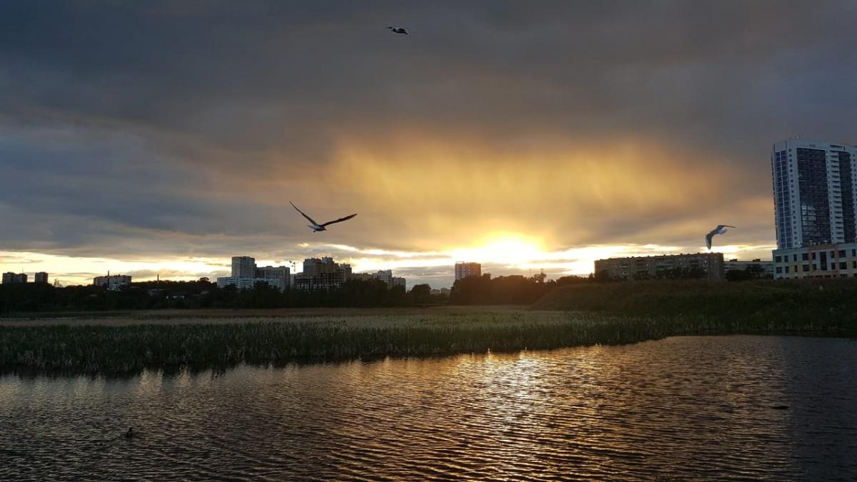Птицы и закат на Уктусе