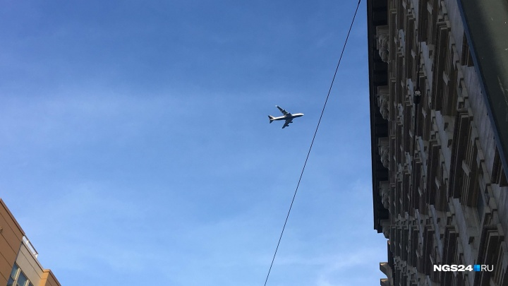 Летевший из Москвы в Красноярск самолет столкнулся с птицами