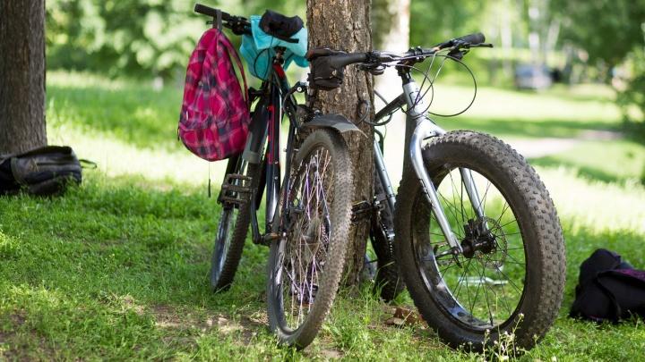 Тащил сумки и велосипеды: в Ярославле поймали серийного вора
