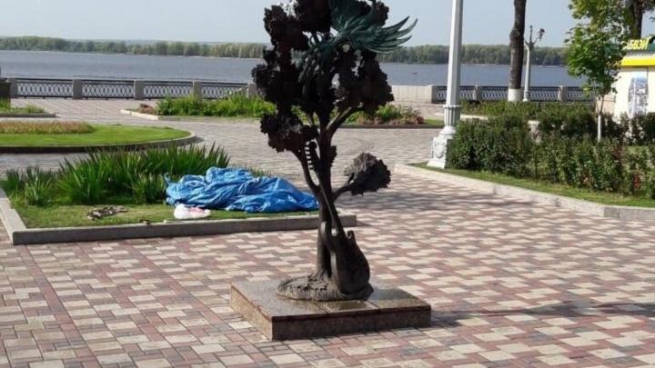 В Самаре установили памятник клёну