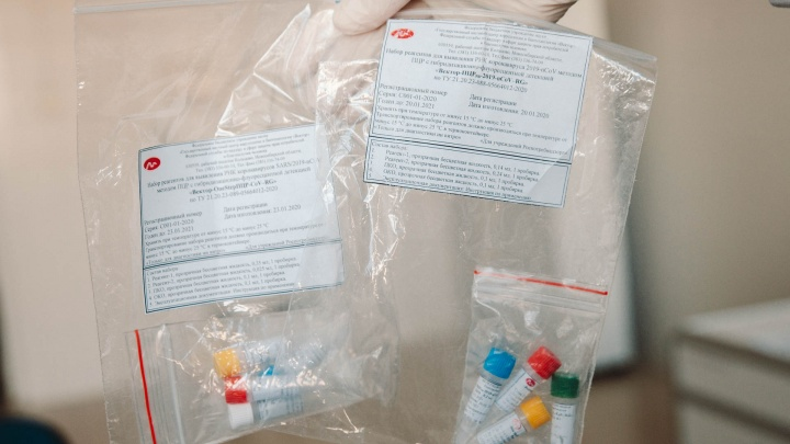 Кому положены? В аптеке можно купить? Как работают тесты на коронавирус, которые привезли в Тюмень