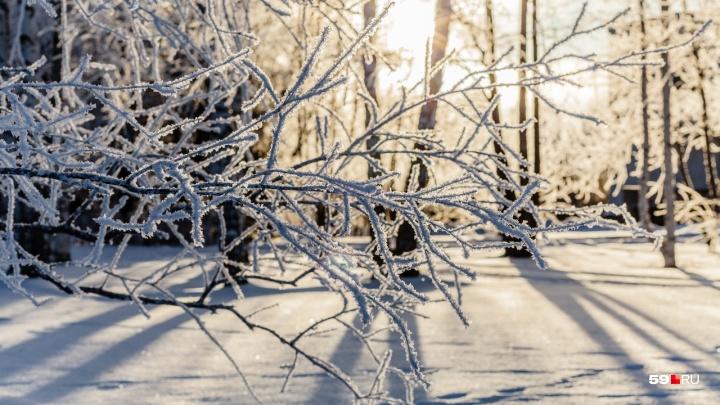 В Прикамье похолодает до -20 °C: публикуем прогноз погоды на неделю