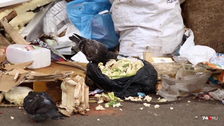 Мусорный оператор отмёл опасения по вывозу отходов в Челябинске из-за претензий к крупному контракту