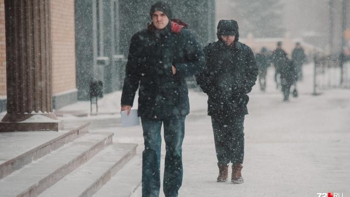 Погода в Тюмени на первую неделю декабря: мороз и снег