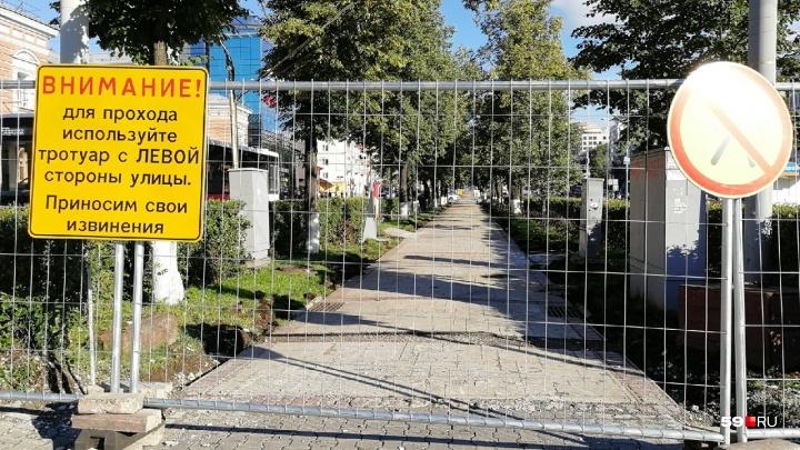 Реконструкция началась: на Комсомольском проспекте в Перми перекрыли аллею для пешеходов