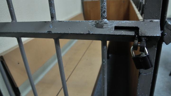 В Каменске-Уральском парня, попавшегося с 30 килограммами наркотиков, посадили на 9 лет