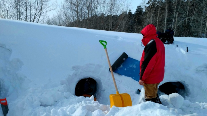 Тепло в любую погоду: новосибирцы вырыли пещеры в сугробе и остались в них ночевать