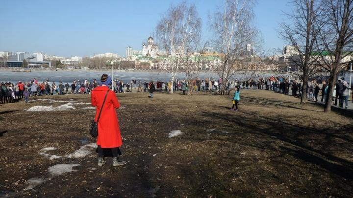 Владельца земли под храм Святой Екатерины выбрали на аукционе за 15 минут