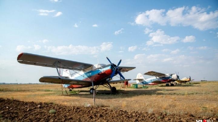 Авиаклуб «Юный ястреб» ищет капитально отремонтированный самолет