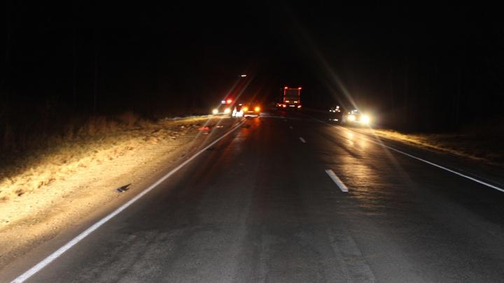 Грузовик зацепил автостопщика на трассе: мужчина погиб, водитель объявлен в розыск