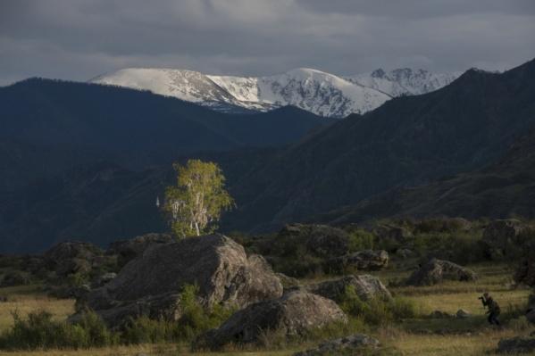 Алтайские горы.Фото Закира Умарова