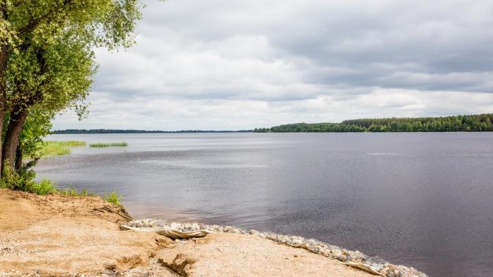 В Ярославском районе молодой жених утонул, пытаясь на спор переплыть Волгу