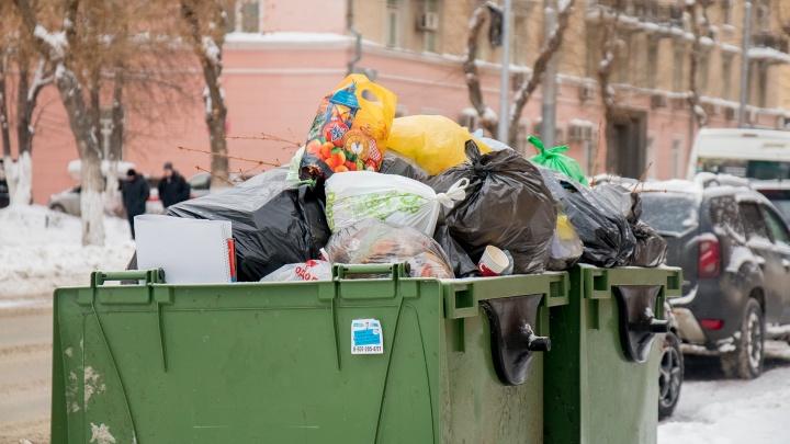 Власти Самарской области утвердили новый мусорный тариф
