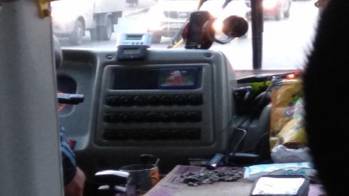 Безопасно или нет? Нижегородцы обсуждают видео с щелкающим семечки водителем маршрутки