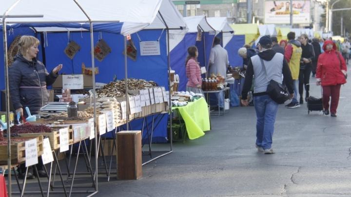 Дорогу рядом с площадью Маркса перекроют на 10 часов ради торговли колбасой и картошкой