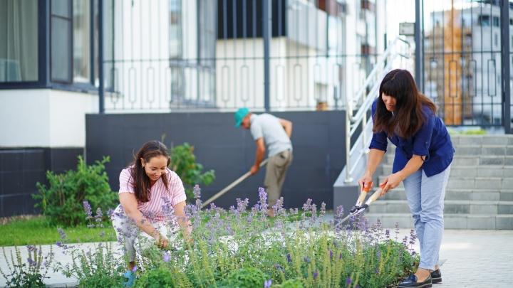 Как создаются зеленые пространства: взгляд профессионального ландшафтного дизайнера