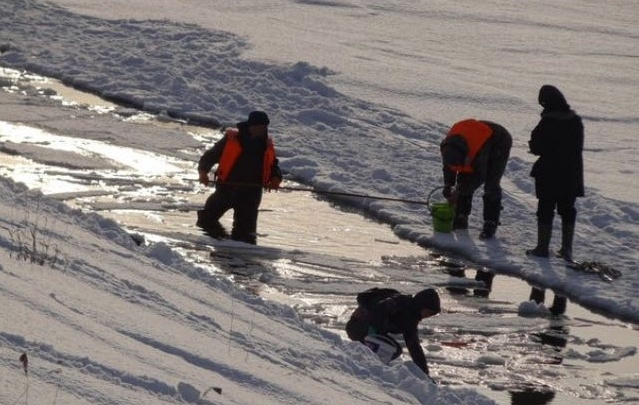 Неравнодушные новосибирцы перевезли на новое место задыхавшуюся подо льдом рыбу