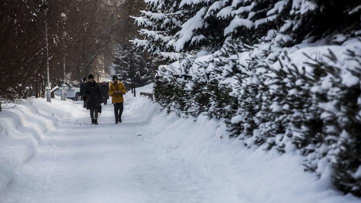 В Новосибирск возвращается морозная погода