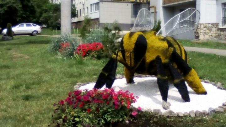 В Уфе появилась еще одна пчела