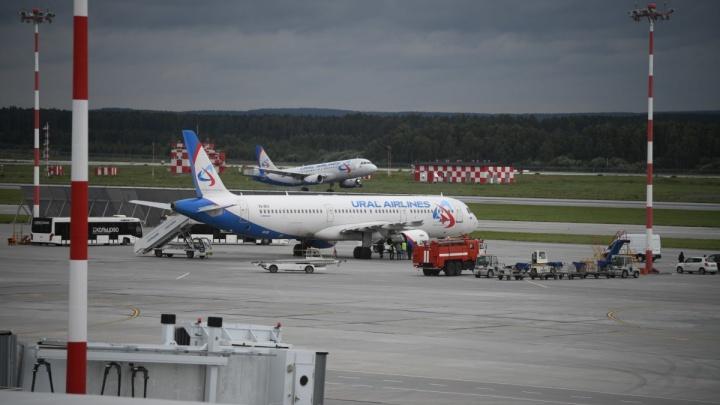 «Сидим уже восемь часов»: в челябинском аэропорту застряли пассажиры рейса до Москвы