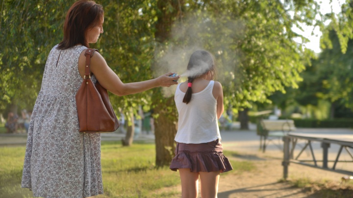 Отбиваясь от солнца и комаров: смотрим фотографии Дня России в Волгограде