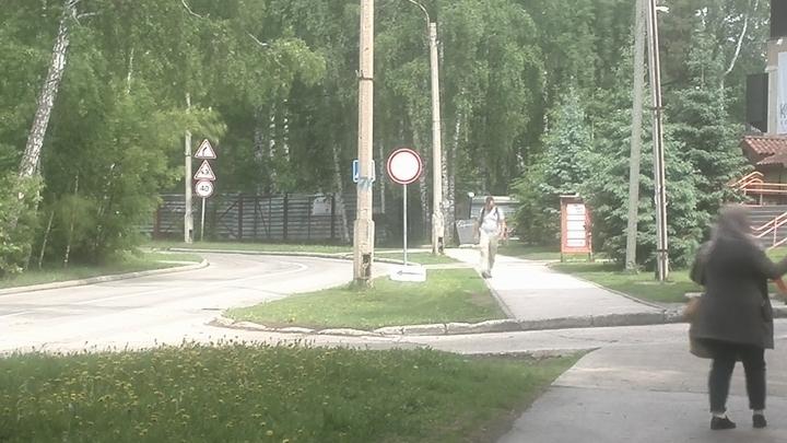 Фейковый дорожный знак запретил проезд по улице c домами заслуженных учёных
