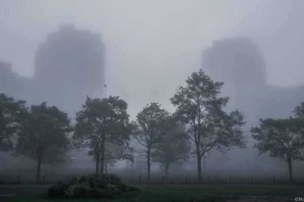 Такой туман сегодня был в Брагино