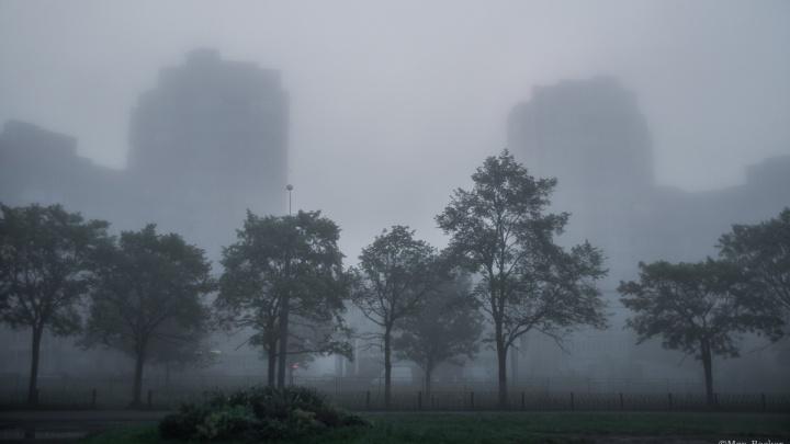 «Сайлент Хилл точно!»: Ярославль заволокло густым туманом. Фоторепортаж с улиц