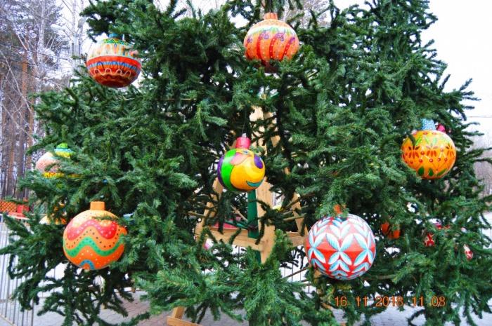 В этом году на главной площади города будет живая елка