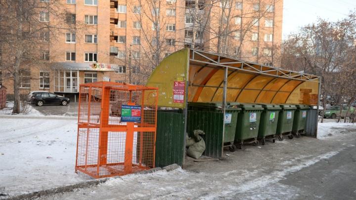 Екатеринбуржцам пообещали, что в каникулы мусор из дворов начнут вывозить с 1 января