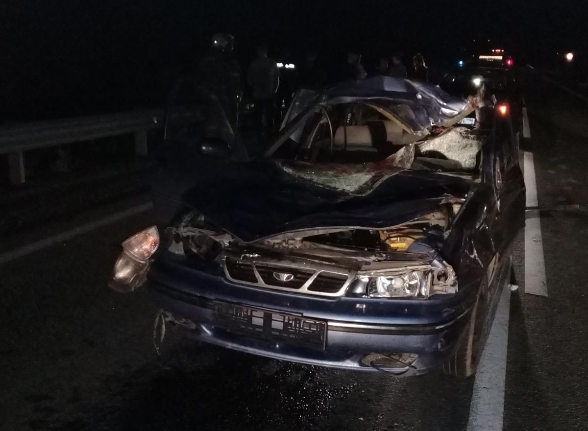 Июнь 2019 года.На 35-м километре дороги Екатеринбург — Реж — Алапаевск 23-летний водитель Daewoo в темноте сбил лося. Погибли и животное, и водитель легковушки