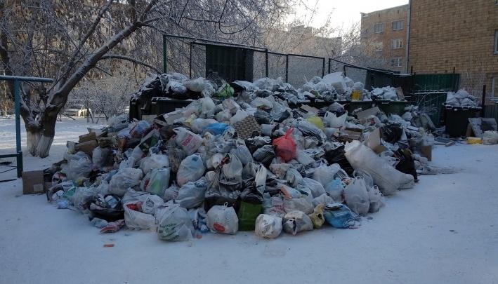 «Крыса прогрызла и намоталась»: механики показали, чем обернулась парковка у мусорного бака