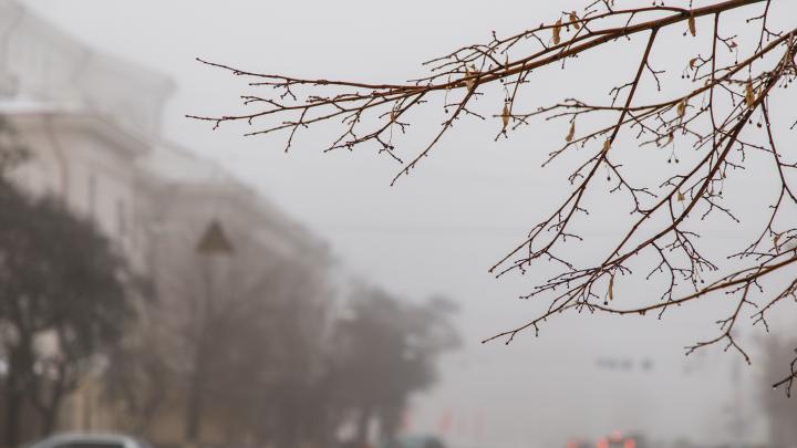 Сыро, мокро и зябко: Волгоградская область отметит Крещение легким морозцем и туманами