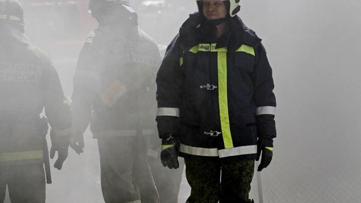 Несмотря на снегопады: в Зауралье начинается противопожарный сезон