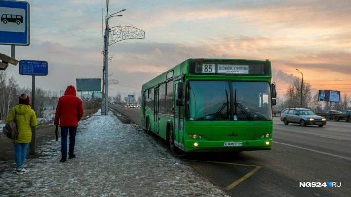«Размазывает всех по стенкам»: пассажир автобуса выступил против полных кондукторов