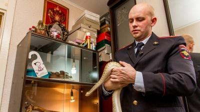 Брутальный, как питон: в Самаре живёт полицейский-серпентолог
