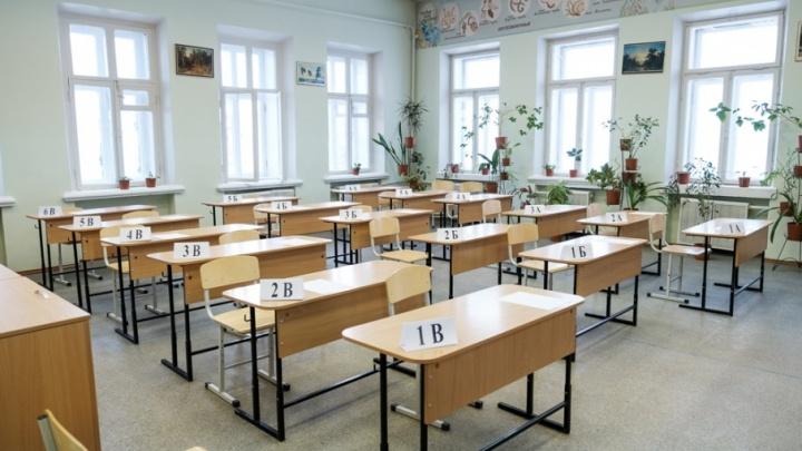 «Хорошо сдают по всему краю»: 19 выпускников из Прикамья получили 100 баллов за ЕГЭ по информатике